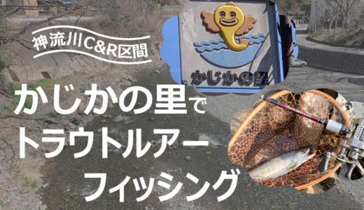 【上野村漁協神流川C&R区間】かじかの里でトラウトルアーフィッシング。きれいなヤマメに出会える渓流